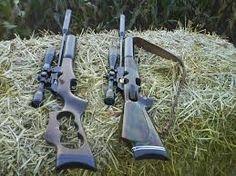 pellet gun silencer instructions