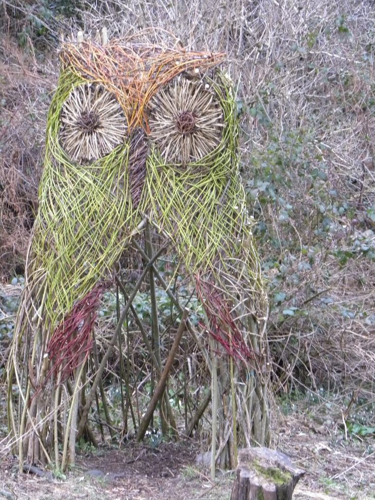 living willow weaving instructions